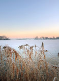 Djupfryst sjö med öar i holland Arkivbilder