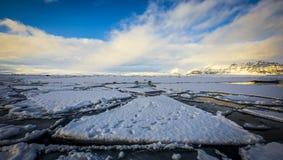 Djupfryst sjö med skyddsremsor Royaltyfri Bild