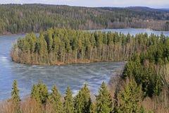 Djupfryst sjö- och skogsikt från synvinkeln arkivfoto