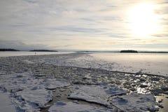 Djupfryst sjö på en vinterdag royaltyfria bilder