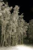 djupfryst skida trailen Arkivbilder