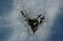 Djupfryst snö, vinter Arkivbild