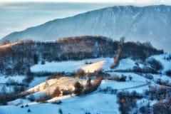 Djupfryst solig dag av en vinter, på lösa transylvania kullar Arkivfoton