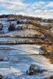 Djupfryst solig dag av en vinter, på lösa transylvania kullar Fotografering för Bildbyråer
