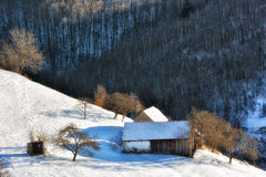 Djupfryst solig dag av en vinter, på lösa transylvania kullar Arkivfoto