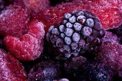 Djupfryst sommar bär frukt makroen Fotografering för Bildbyråer