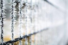 Djupfryst staket med isgrova spikar Royaltyfri Bild