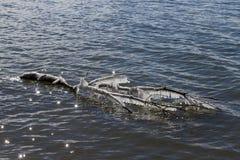 Djupfryst trädlem som svävar på en mousserande sjö Arkivbilder