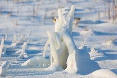 Djupfryst växt på snöig fält Royaltyfria Bilder