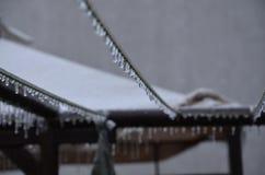 djupfryst vatten Fotografering för Bildbyråer