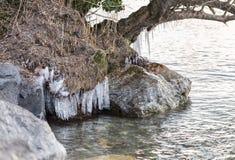 Djupfryst vatten på sjön 10 Royaltyfri Fotografi