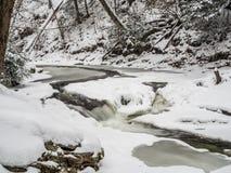 Djupfryst vattenfall i Ricketts Glen Park Royaltyfri Bild
