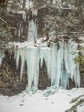 Djupfryst vattenfall i Ricketts Glen Park Royaltyfria Bilder