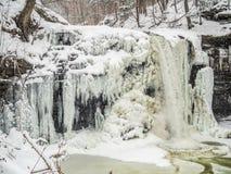 Djupfryst vattenfall i Ricketts Glen Park Arkivfoton