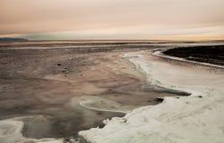 Djupfryst vinkar på solnedgången arkivfoton