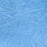 Djupfryst vinterfönsterexponeringsglas Arkivbilder