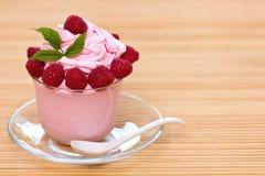Djupfryst yoghurt arkivbilder