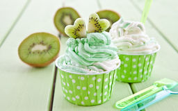 Djupfryst yoghurt med den nya kiwin Royaltyfri Fotografi