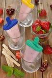 Djupfryst yoghurt med jordgubbar Royaltyfri Fotografi