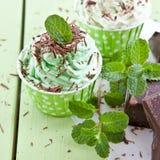 Djupfryst yoghurt med mintkaramellen royaltyfri fotografi