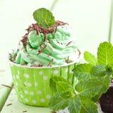 Djupfryst yoghurt med mintkaramellen royaltyfria bilder