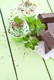 Djupfryst yoghurt med mintkaramellen arkivfoton