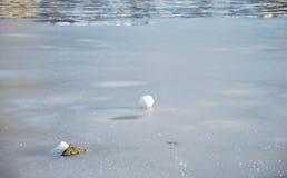 Djupfryst yttersida av vatten: kasta snöboll royaltyfri foto