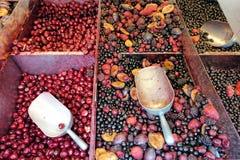 Djupfrysta bär, svart vinbär, röd vinbär, hallon, blåbär Top beskådar makroen i shoppar arkivfoto