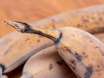 Djupfrysta bananer arkivbild