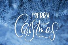 Djupfrysta barrträds- filialer i den vita vintern med glad jul för text Kalligrafi och bokstäver Royaltyfri Fotografi