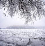 Djupfrysta Danube River Royaltyfria Bilder