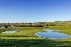 Djupfrysta flodded fält på en lantgård Royaltyfri Foto