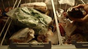 Djupfrysta grönsaker och kött arkivfilmer