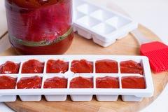 Djupfrysta kuber för tomatfruktsaft Arkivfoton