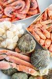 Djupfrysta skal av kammusslan, räkorna och krabborna Royaltyfri Bild