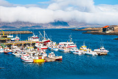 Djupivogur - fiskeläge på Island Arkivbild