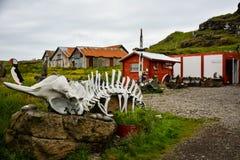 Djupivogur, Islandia - 24 de junio de 2014: casa o cabina típica en I imagen de archivo