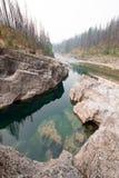 Djupt - grön pöl av lugnt vatten i ängliten vikklyftan i det Bob Marshall Wilderness området i Montana USA royaltyfri fotografi