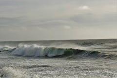 Djupt kallt hav i Island royaltyfria bilder