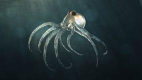 djupt octopod hav vektor illustrationer