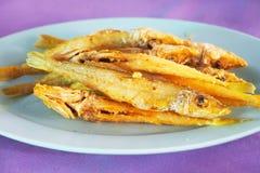 Djupt stekt fisk med ny gurkmeja royaltyfri foto