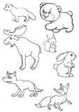 djur Vektor Illustrationer