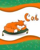 Djur alfabetbokstav C och katt Arkivbilder