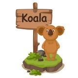 Djur alfabetbokstav K för koala Royaltyfria Bilder