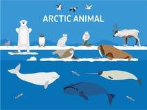 Djur av arktisken Plan stilillustration Fotografering för Bildbyråer