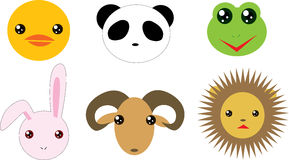 djur behandla som ett barn Arkivbilder