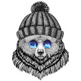 Djur bild för grisslybjörnHipsterstil för tatueringen, logo, emblem, emblemdesign stock illustrationer