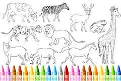 djur bokfärg Arkivfoton