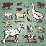 djur brukar set vektortappning Fotografering för Bildbyråer