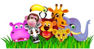 djur djungel Royaltyfria Bilder
